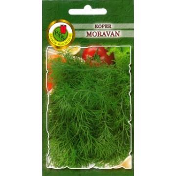 Dilles Moravan
