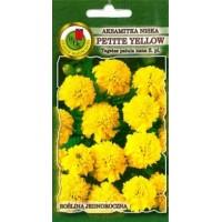 Samtenes zemās Petite Yellow