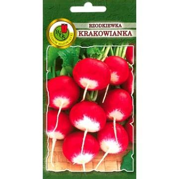 Redīsi Krakowianka- Krakowianka Oza