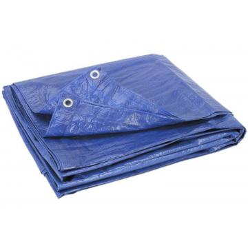 Pārklājs PE 5x8m zils