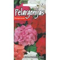 """Pelargonijas zonālās """"Colorama Mix"""" 0.2g"""