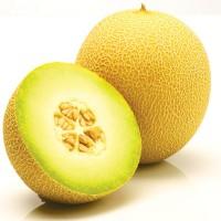 Melones Jucar RZ (5 sēklas)