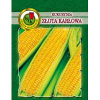 Kukurūza saldā Złota Karłowa